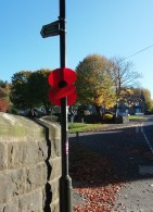Lamp Post Poppies & Remembrance Day